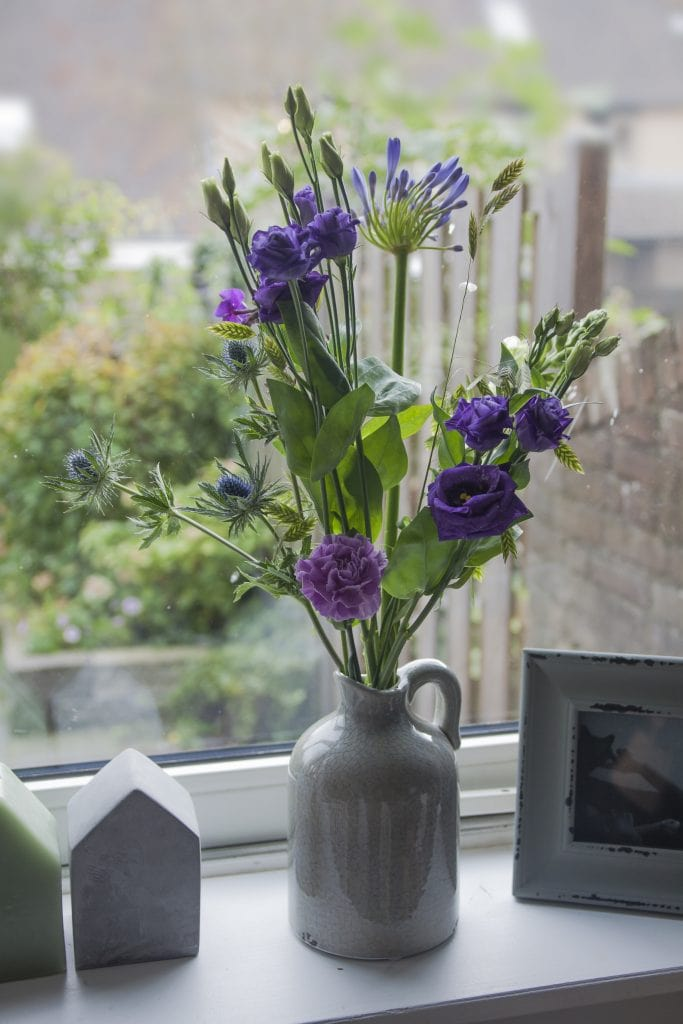 lisianthus dutch holland flowerwiki holex flower blog