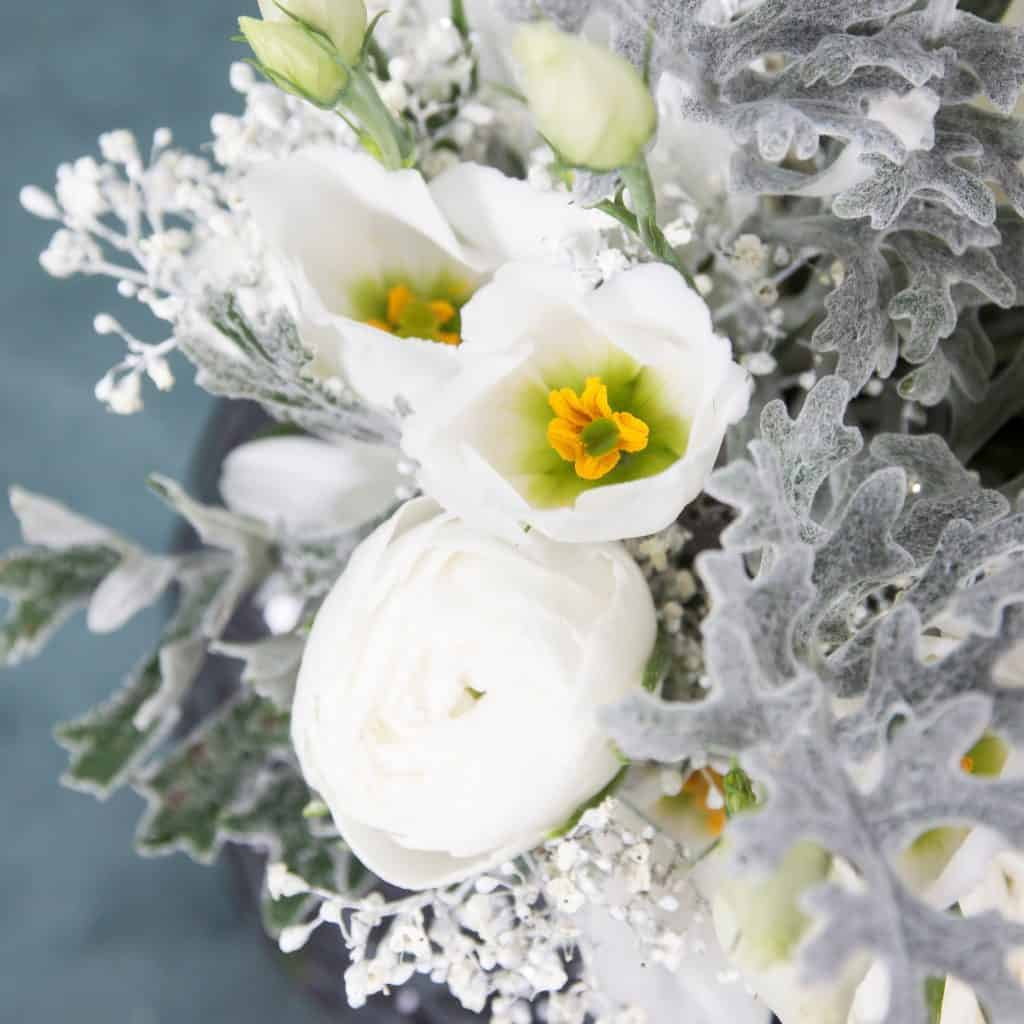 All about White - Holex Flower