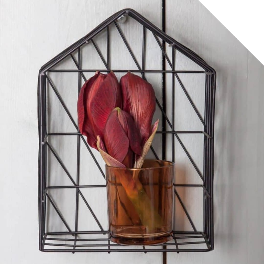Amaryllis design in a frame