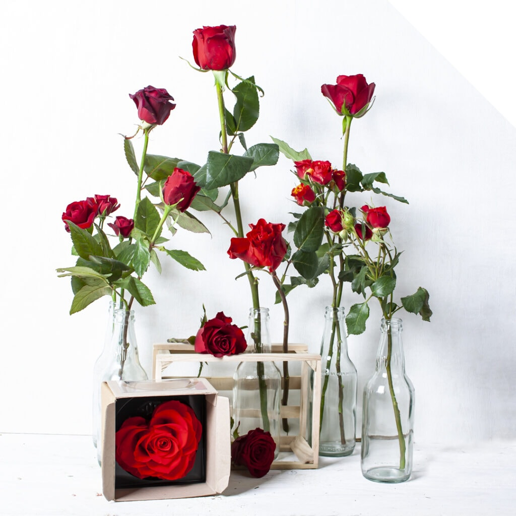 A list of trendy Valentine roses for 2019