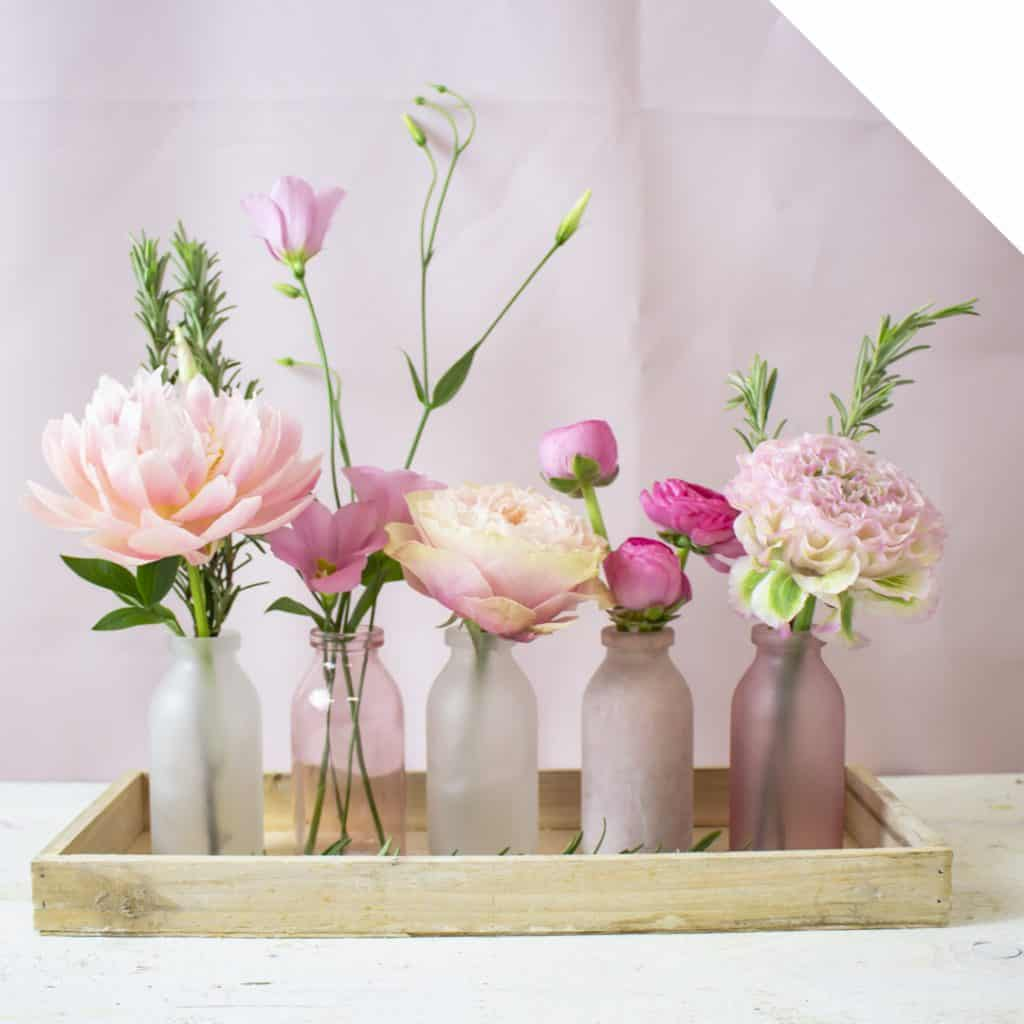 Pink Flowers | Color Inspiration | Holex Flower