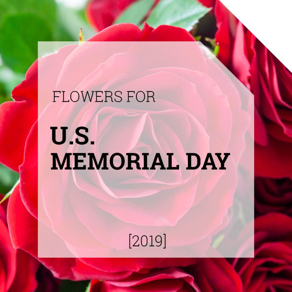 Flowers for US Memorial Day | Holex Flower