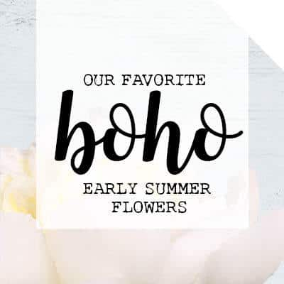 Our Favorite Boho Early Summer Flowers