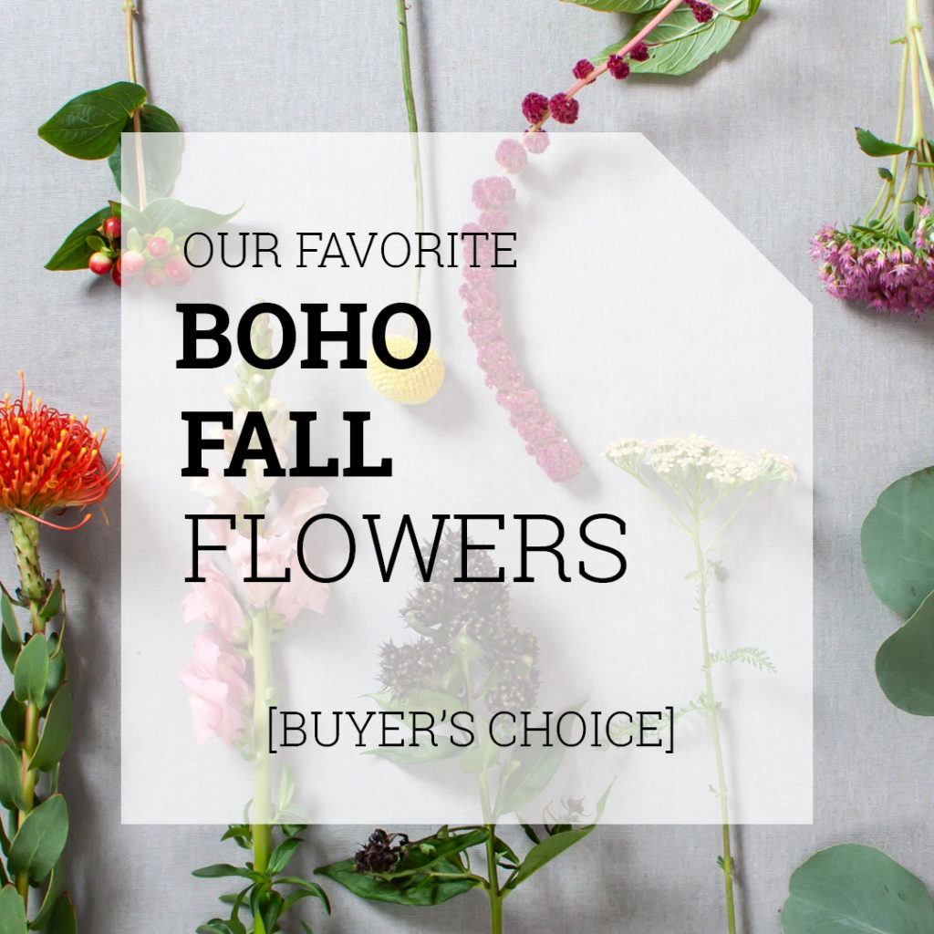 Bohemian Fall Flowers | Holex Flower