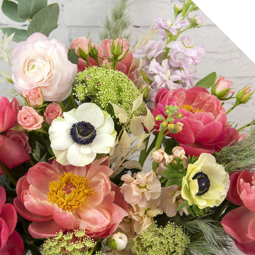 Holex USA Our Favorite Pastel and Pink Colored Flowers | Holex Flower