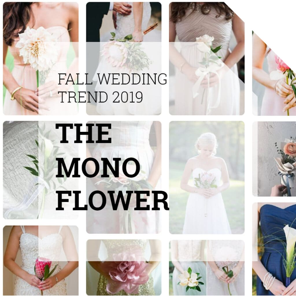Mono Bouquet Wedding Trend | Holex Flower