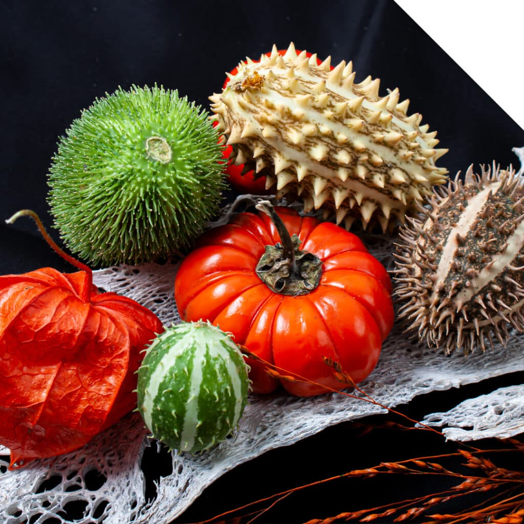 Fruits to celebrate the true meaning of Halloween | Holex Wholesale Flowers