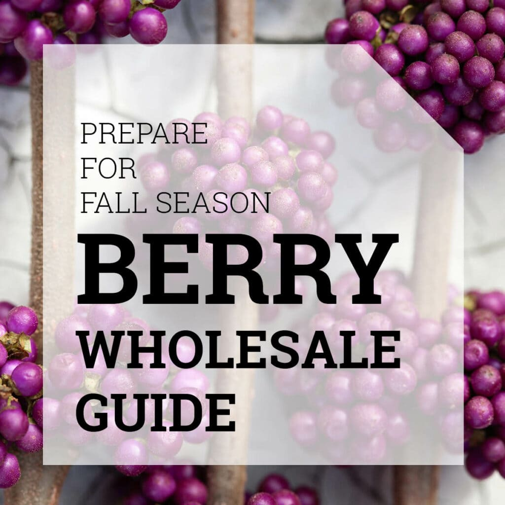 Berry Wholesale Guide | Holex.com